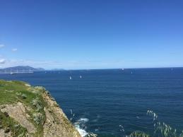 So many sailboats!
