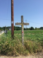 Many of the crosses can be found along the way