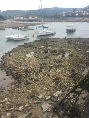 Low tide in Plentzia