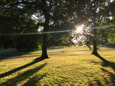 Regent's Park at sunset